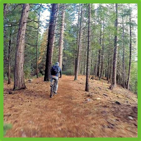 Biking around Lake Siskiyou - California - Epic Trip Adventures