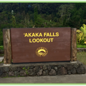 Akaka Falls State Park - Hawaii Big Island - Epic Trip Adventures