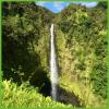 Akaka Falls - Hawaii Big Island - Epic Trip Adventures