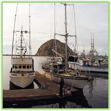 Morro Bay - California - Epic Trip Adventures