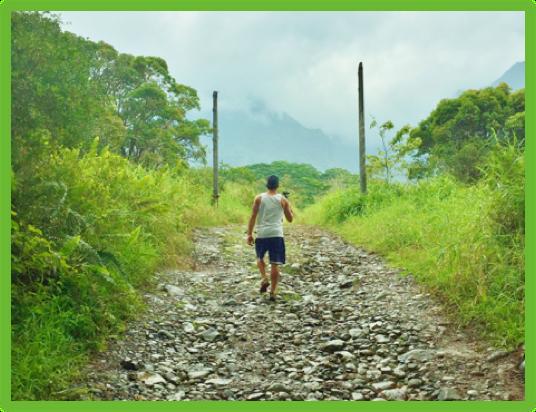 The Jurassic Park Gate - Kauai - Epic Trip Adventures