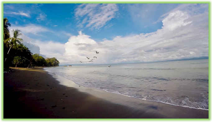 Matapalo Beach - Costa Rica- Epic Trip Adventures