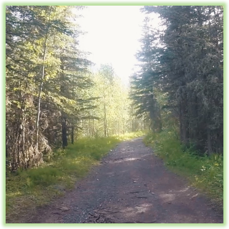 Ribbon Lake Trail - Kananaskis - Epic Trip Adventures