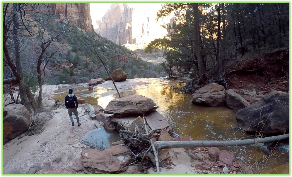 Middle Emerald Pool - Zion - Epic Trip Adventures