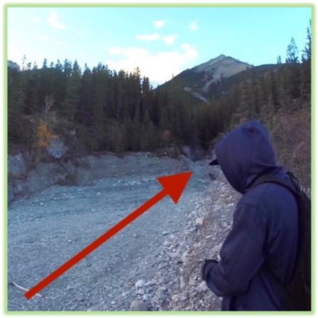 Grotto Canyon Creek Bed- Canmore - Epic Trip Adventures