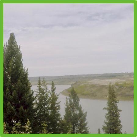 Calgary Rope Swing Trail - Calgary - Epic Trip Adventures